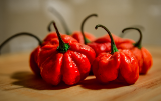 carolina reaper peppers online
